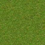 grünen Wiese Gras. nahtlose Textur — Stockfoto