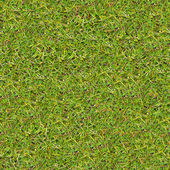Meadow Grass. Seamless Texture. — Stock Photo