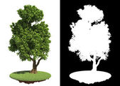 Green Tree with Detail Raster Mask. — Stock Photo