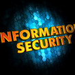 Information Security on Digital Background. — Stock Photo #43770405