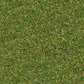 Jarní trávy. bezešvé tileabletexture. — Stock fotografie