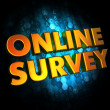 Online Survey Concept on Digital Background. — Stock Photo