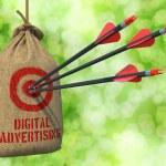 Digital Advertising - Arrows Hit in Red Mark Target. — Stock Photo #47386603
