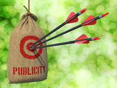Publicity - Arrows Hit in Red Mark Target. — Stock Photo
