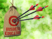 Business Education - Arrows Hit in Red Mark Target. — Stock Photo