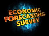 Economic Forecasting Survey on Digital Background. — Stock Photo
