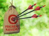 Procurement Management - Arrows Hit in Red Mark Target. — Stock Photo