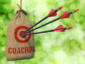Coaching - flechas en blanco. — Foto de Stock