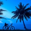 Twilght bike coconut tree — Stock Photo