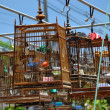 Traditional birdcages — Stock Photo