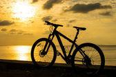 Single mountain bike — Stock Photo