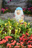 Chiangrai flora — Stockfoto