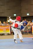 Taekwondo Şampiyonası — Stok fotoğraf