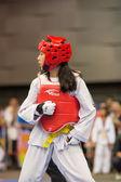 Championnat de taekwondo — Photo