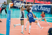 Volleyball World Grand Prix 2014 — Стоковое фото