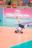 Volleyball World Grand Prix 2014 — Stockfoto