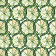 Limes slices watercolor seamless background — Stock Photo