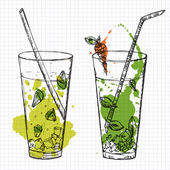 Set of two cocktails drawn on squared notebook paper. Vector illustartion — Stock Vector
