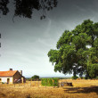 Stock Photo: Little Rural House
