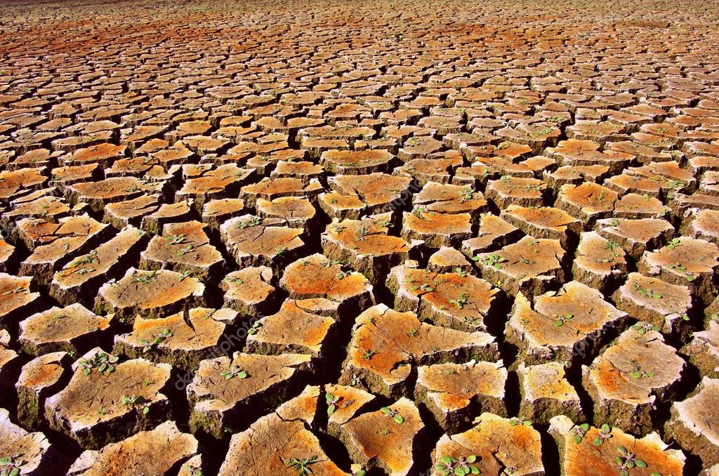 Cracked and dried soil under a hot sunlight — Stock Photo #13898405