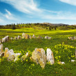 Countryside with Stones — Stock Photo