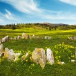 Countryside with Stones — Stock Photo #14819237