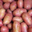 red potatoes — Stock Photo