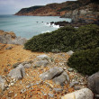 Guincho Cliffs — Stock Photo #23048100