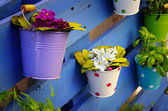 Flower Baskets — Stock Photo