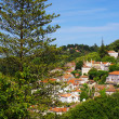 Stock Photo: Sintra View