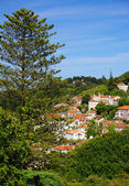 Sintra View — Stock Photo
