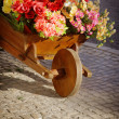 Flower Handcart — Stock Photo #30944961