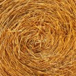 Straw Texture — Stock Photo #30944975