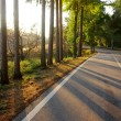 Stock Photo: Sunset Road