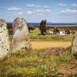 Stock Photo: Megalithic Menhirs