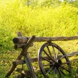 Old Wheel on Fence — Stock Photo #48547819