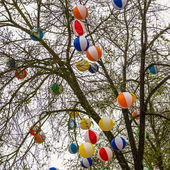 Colorful balls hahging in tree — Zdjęcie stockowe