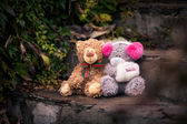Couple of teddy bears sitting together on the stone stairs — Stock Photo