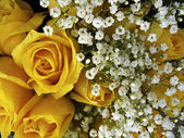 Yellow Roses And Baby — Stock Photo