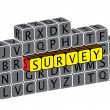 Illustration of word survey using alphabet cubes. The graphic ca — Stock Vector