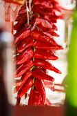 Pepper Closeup — Stock Photo