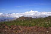 Landscape of lava, Teide National Park. Tenerife — Stock Photo