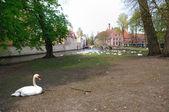 Bruges belgio — Foto Stock