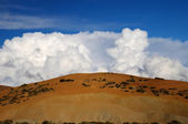 Cumulonimbus cloud. Blue sky with ornamental clouds — Stock Photo
