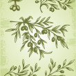 Vintage olive branch - Stock Vector
