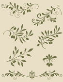 Decorativo rama de olivo — Vector de stock