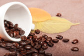 Coffe cup and leaves — Stock Photo