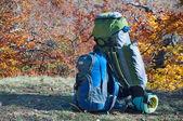 Plato üzerinde sırt çantaları — Stok fotoğraf