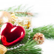 Red heart and pine branch — Stock Photo #16628535