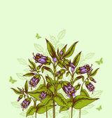 Background with bellflower — Stock Vector